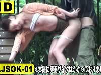 スリル青姦 強行突破セックスVOL.1
